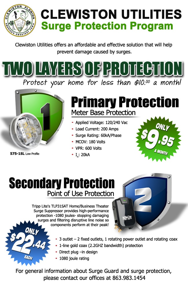 Surge Protection Program Flyer