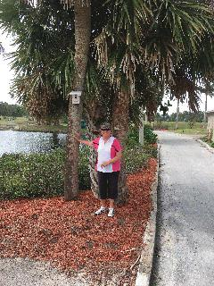 Carol Knox - Net Champion - 2018 Clewiston Women's Golf Association's Annual Club Championship